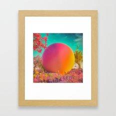 GYUMBALL (everyday 05.26.16) Framed Art Print