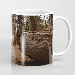 Light Between Fallen Sequoias Coffee Mug