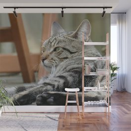 Cat by Frederick Tubiermont Wall Mural