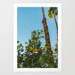 California Orange Tree II Art Print