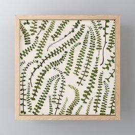 Fern Leaves Framed Mini Art Print