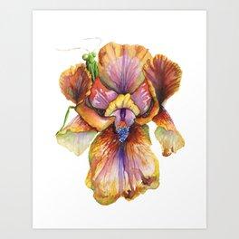 Lord of the Iris Kingdom Art Print