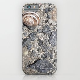 Striped Husk on Earth iPhone Case