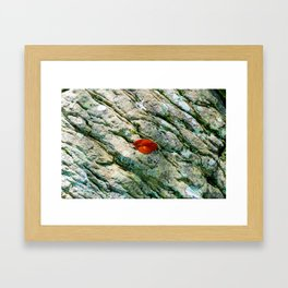 Rebellious Red Leaf Framed Art Print