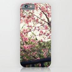 Spring Garden iPhone 6s Slim Case