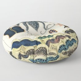 Barrier Reef Molluscs and Planarians from The Great Barrier Reef of Australia (1893) by William Savi Floor Pillow