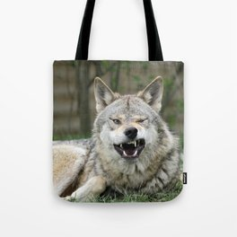 Wolf_012_by_JAMFoto Tote Bag