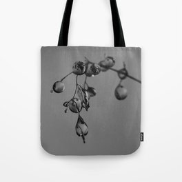 Exmoor IV Tote Bag
