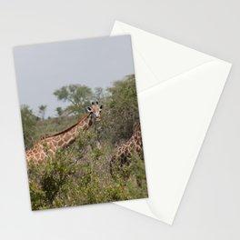 Giraffes Grazing in Tanzania Landscape Stationery Cards