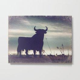 Toro Metal Print