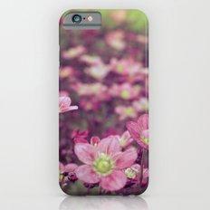 Pink Saxifrage iPhone 6s Slim Case