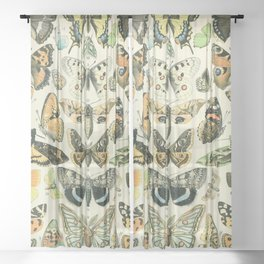 Vintage Butterfly Diagram // Papillions by Adolphe Millot XL 19th Century Science Textbook Artwork Sheer Curtain