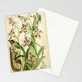 Cyrtochilum zebrinum Stationery Cards