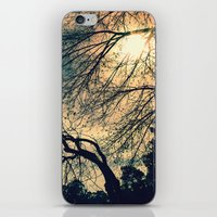 sunshine iPhone & iPod Skins featuring Sunshine by Graphic Tabby