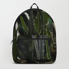 Red Hash Backpack