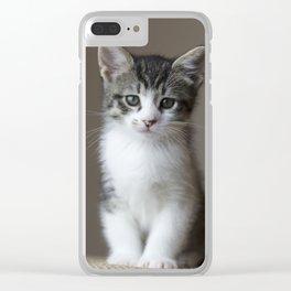Jack - Kitten Portrait #2 (2016) Clear iPhone Case