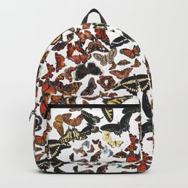 Butterflies of Maine Pattern Backpack