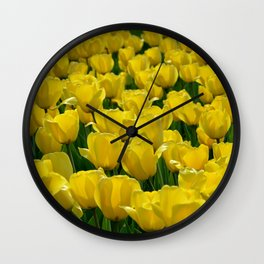 Field of Yellow Tulips Wall Clock