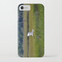 grace iPhone & iPod Cases featuring grace by Lisa Carpenter