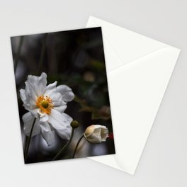 unterwegs_1284 Stationery Cards