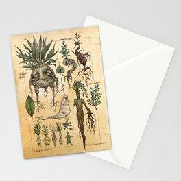 Mandragora Radix Stationery Cards