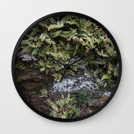 Fern Covered Coastal Cliff Face Wall Clock