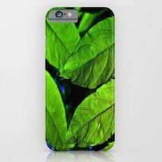 recto verso iPhone 6 Slim Case