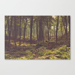Forest by the Lake Canvas Print
