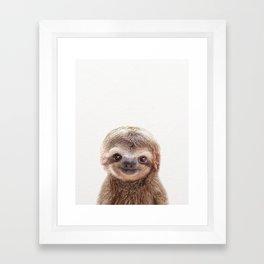 Baby Sloth, Baby Animals Art Print By Synplus Framed Art Print