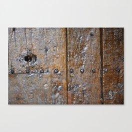 Oxford door 7 Canvas Print