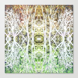 124 - White branches design Canvas Print