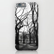Central Park - New York iPhone 6 Slim Case