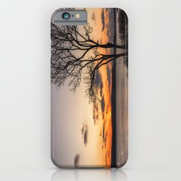Tree silhouette at sunset iPhone Case