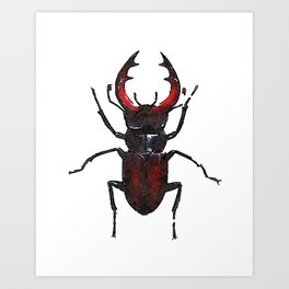 Stag beetle watercolor Art Print