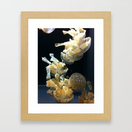 Mushrooms Of The Sea Framed Art Print