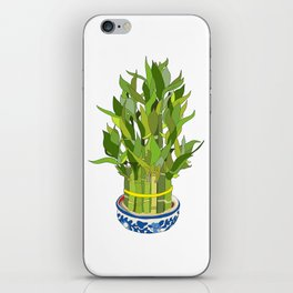 Lucky Bamboo in Porcelain Bowl iPhone Skin