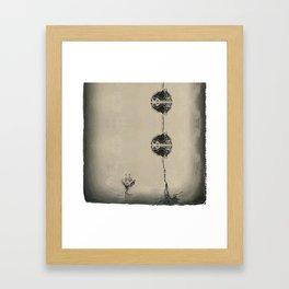 Flower #347 Framed Art Print