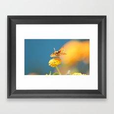 wings. Framed Art Print