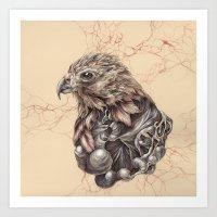 hawk Art Prints featuring Hawk by Adrian Chin