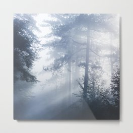 Sun rays shinning through foggy forest Metal Print
