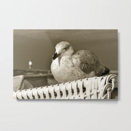 SEAGULL on the BALTIC SEA Metal Print