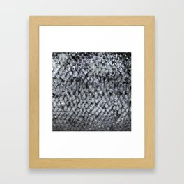 Silver Fish SKIN Framed Art Print