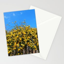 Cat's Claw Vine Over Fence Stationery Cards