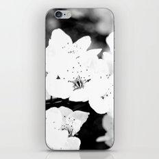 resurection iPhone & iPod Skin