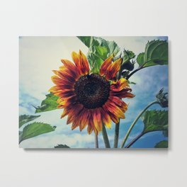 Perfectly imperfect Metal Print
