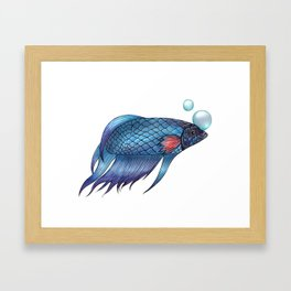 Sammy the Betta Framed Art Print