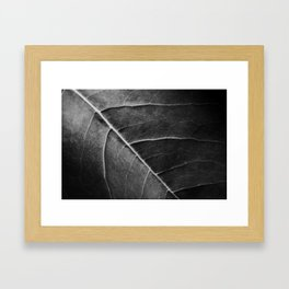 The Structure Of Nature Framed Art Print
