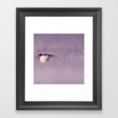 Snail on Crack Framed Art Print