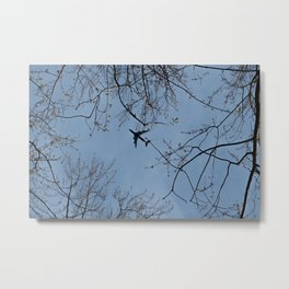 Passing Jet Metal Print