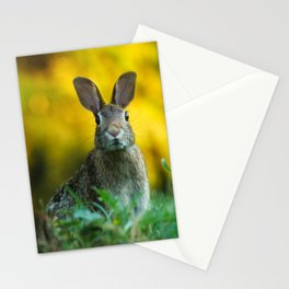 Rabbit | Lapin Stationery Cards